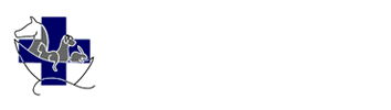 Uw vertrouwde dierenarts in Turnhout en omgeving | De Blauwe Ark